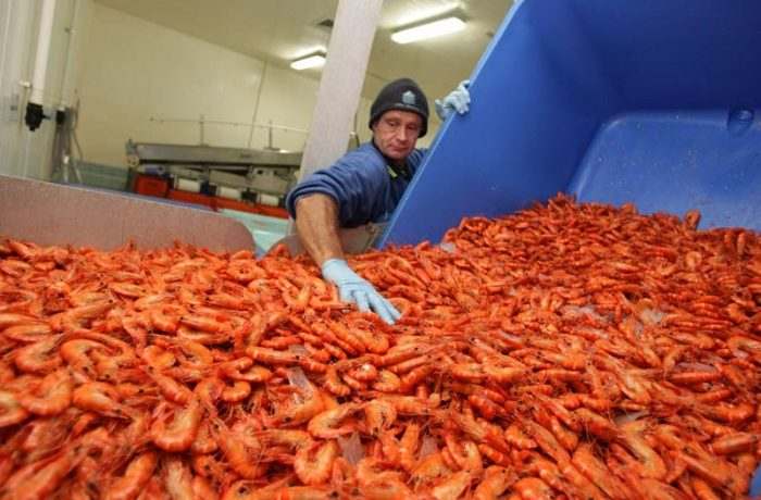 Australian Prawn Farmers Association
