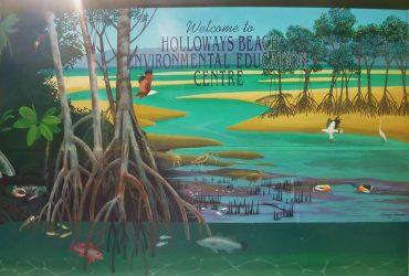 Episode 8: Holloways Beach Environmental Education Centre