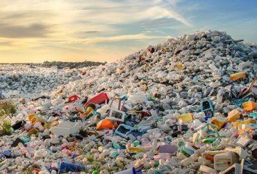 Season 2 Episode 6: Michelle Blewitt on Microplastics