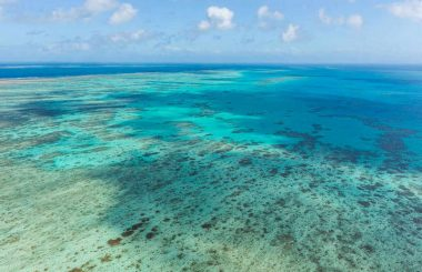 Reef Water Quality Report Card 2019 Shows Progress